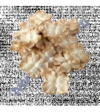 Лепестки гортензии большие 5 см, 10 шт, цвет бежевый двухтоновый