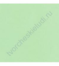 Ткань для рукоделия 50х110 см, 100% хлопок, цвет светло-зеленый