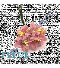 Мини-лилии Шебби-розовые, размер цветка 2.5 см, 5 шт