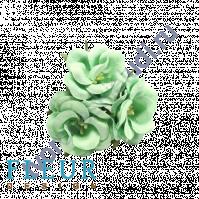 Цветочки Дикие розы мятные, размер цветка 4.5 см, 3 шт