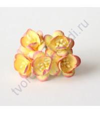 Цветы вишни, 5 шт, цвет желтый с розовым