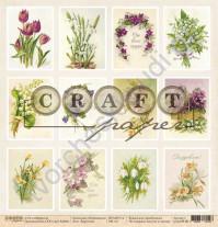 Бумага для скрапбукинга односторонняя коллекция Первоцветы, 30.5х30.5 см, 190 гр/м, лист Карточки