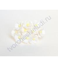 Цветы вишни средние 1.5 см, 10 шт, цвет белый