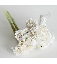 Гипсофилы 10 шт, цвет белый
