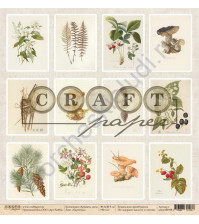 Бумага для скрапбукинга односторонняя коллекция Ароматы леса, 30.5х30.5 см, 190 гр/м, лист Карточки