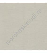 Кардсток текстурированный 30.5х30.5 см, плотность 216 гр/м, цвет Светло-серый