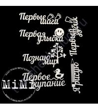 Чипборд Набор Познаю мир, коллекция Детский альбом, 10х7.5 см