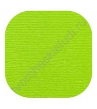 Кардсток текстурированный 30.5х30.5 см, цвет Крикет, плотность 235 гр/м2