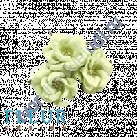 Цветочки Дикие розы светло-зеленые, размер цветка 4.5 см, 3 шт