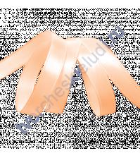 Лента атласная 12 мм, цвет светло-персиковый, 1 метр
