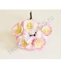 Цветы вишни, 5 шт, цвет бело-розовый