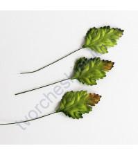 Листья шиповника зеленые 3,5х2,5 см, 10 шт
