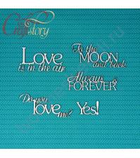 Набор чипборда Фразы Love, 5 элементов